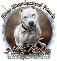 our Amy was the sweetest pitbull ever!