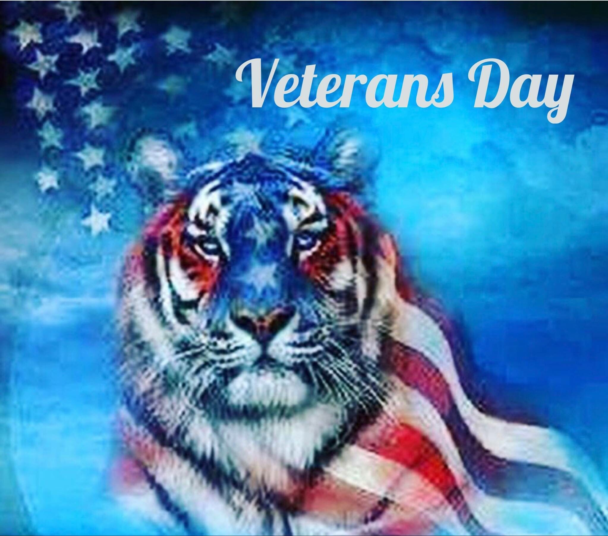 Happy veterans Day - Thank you for your Service #USA # ...