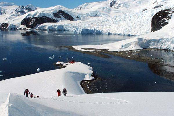 antártica chilena - Buscar con Google