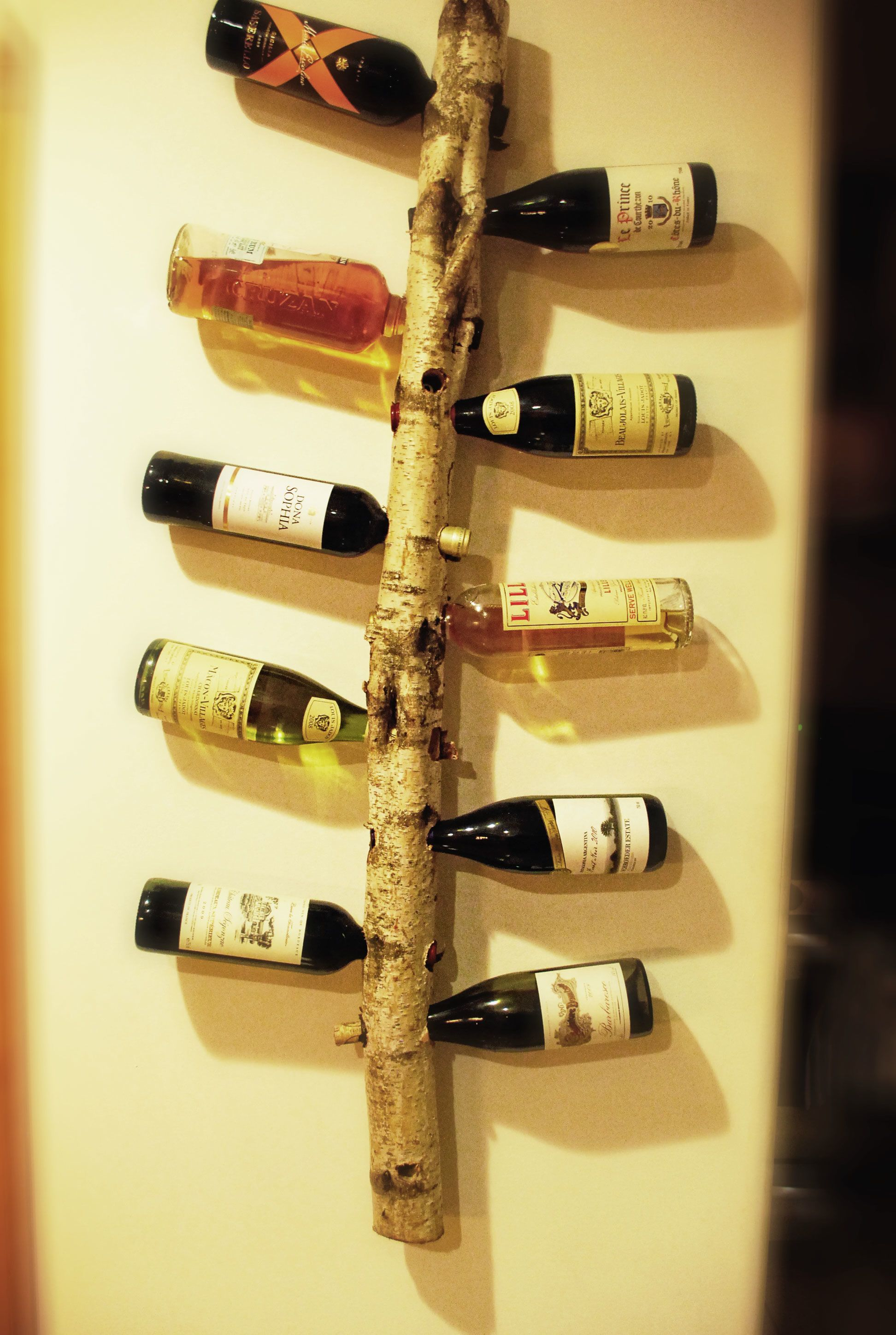 Here is a wine rack i made out of a birch tree branch bútor