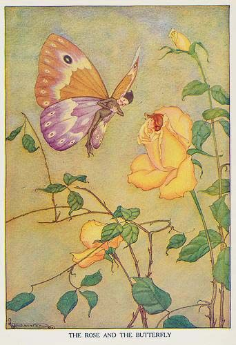 Milo Winter (American, 1888-1956). The Rose and the Butterfly. Illustration from Aesop's Fables, 1919.