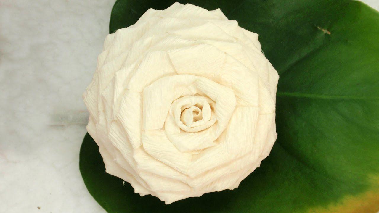 Diy Toilet Paper Rose Tutorial Diy How To Make June Pinterest