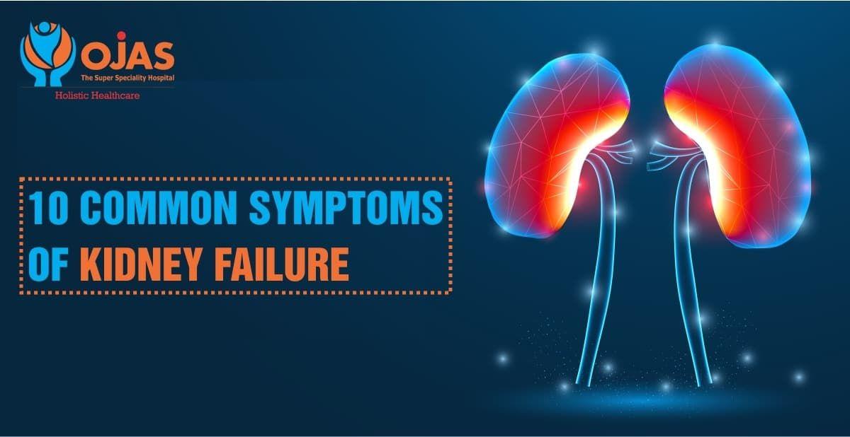 10 Common Symptoms Of Kidney Failures Kidney Failure Symptoms Kidney Failure Symptoms