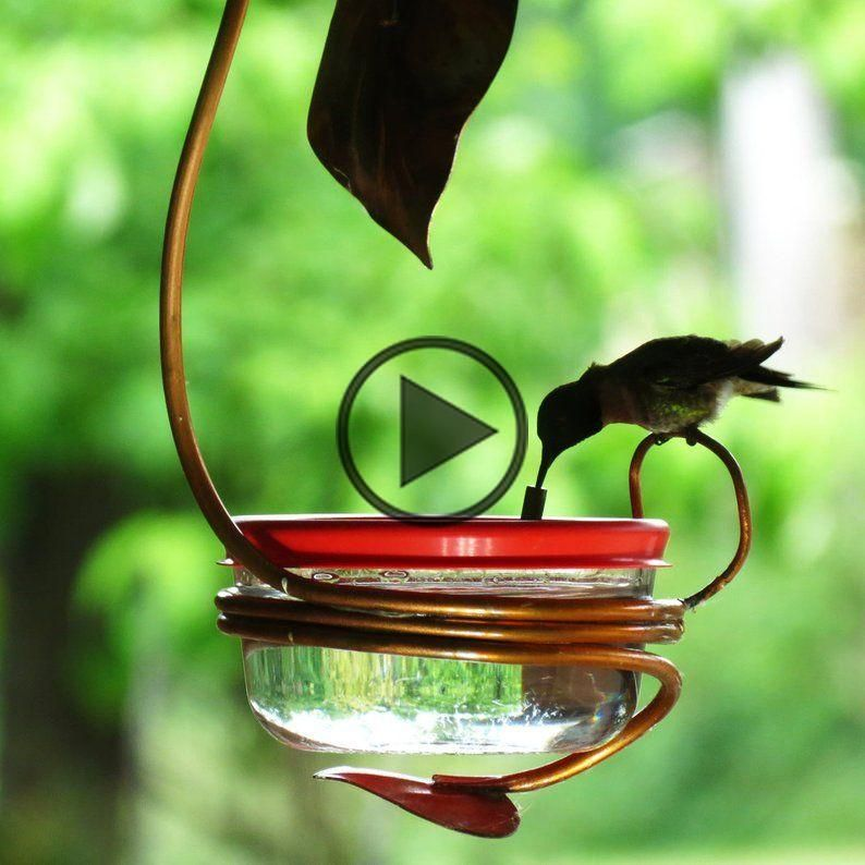 Hummingbird Feeder Single Port, Copper Garden Art, Glass