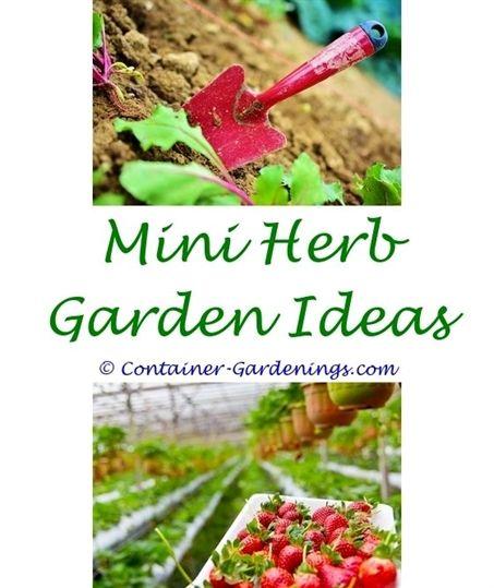 5 Vertical Vegetable Garden Ideas For Beginners: How To Plant A Vegetable Garden For Beginners