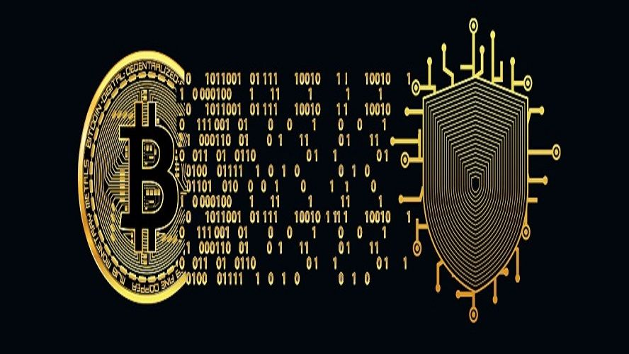 How to Secure & Anonymize Your Bitcoins? Learn how to secure your bitcoins  with anonymous bitcoins wallet and prevent onli… | Bitcoin, Bitcoin wallet,  Money machine