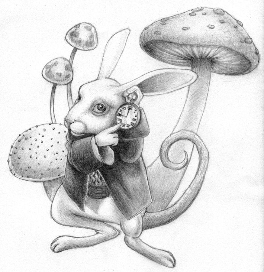 Alice Perrin Google Search: White Rabbit Alice In Wonderland Drawing