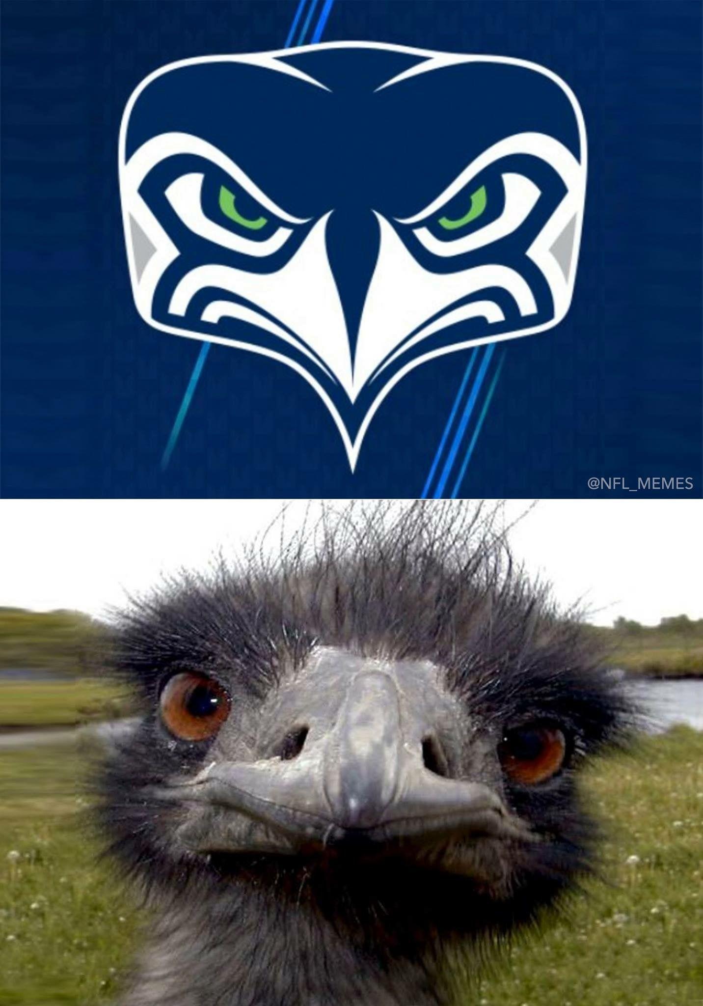 Seahawks new logo Animals, Owl, Football memes
