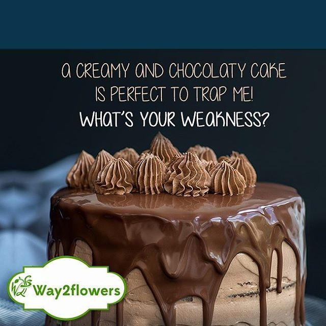 Tell Us Your Weakness Way2flowers