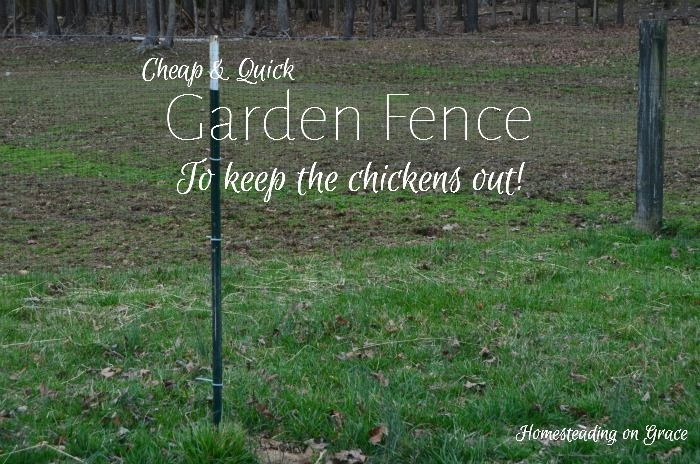 Amazing We Needed A Cheap And Quick Fence To Put Up Around The Garden To Keep The