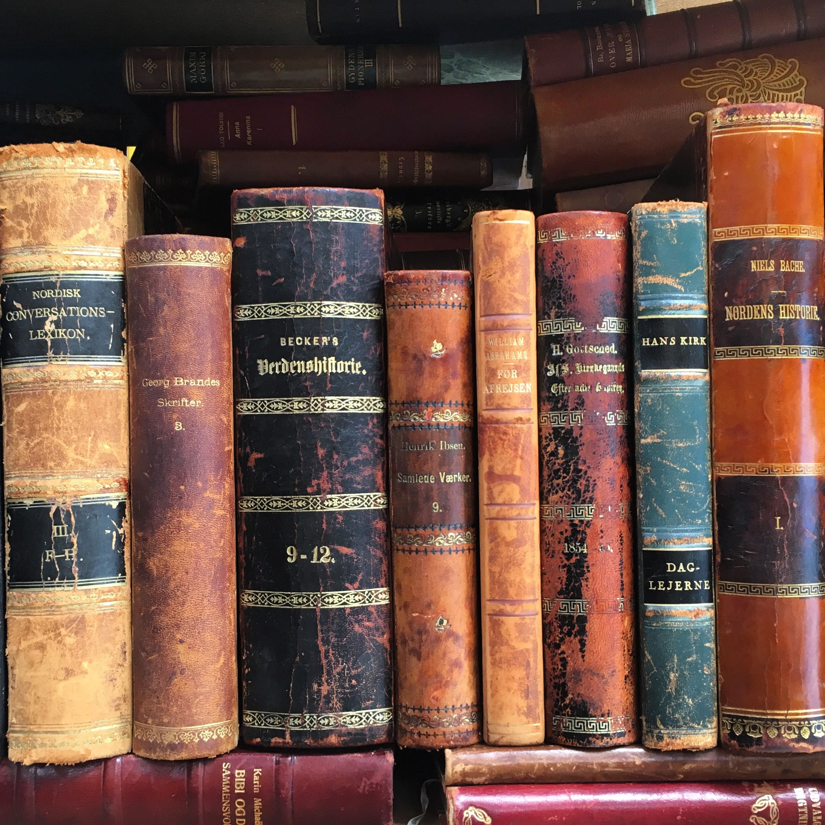 Antique Leather Bound Books In Foreign