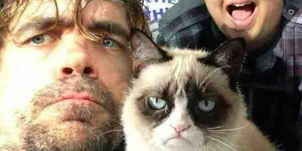 Peter Dinklage And Grumpy Cat Just Took The Most Epic Photo Of The Year Together Grumpy Cat Cat Selfie Funny Animals