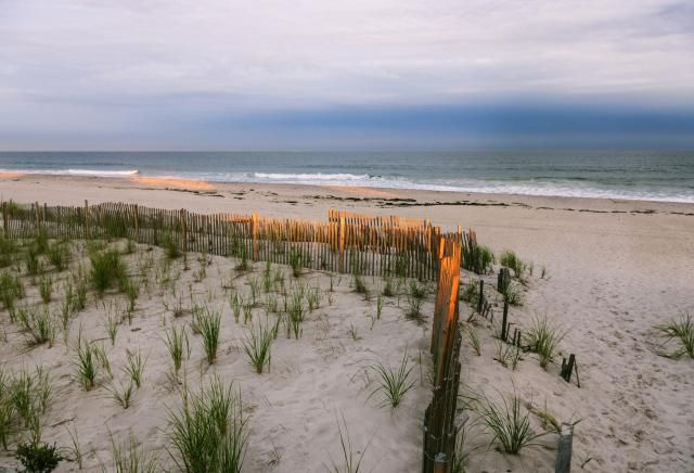The Best South Shore Beaches On Long Island National Parks Fire Island Cool Places To Visit
