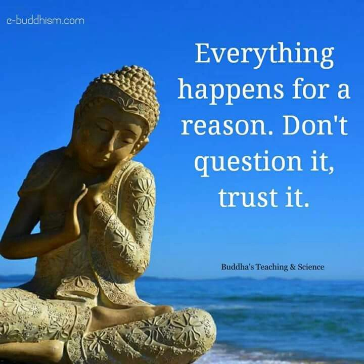 """Image result for buddha quotes"""""""