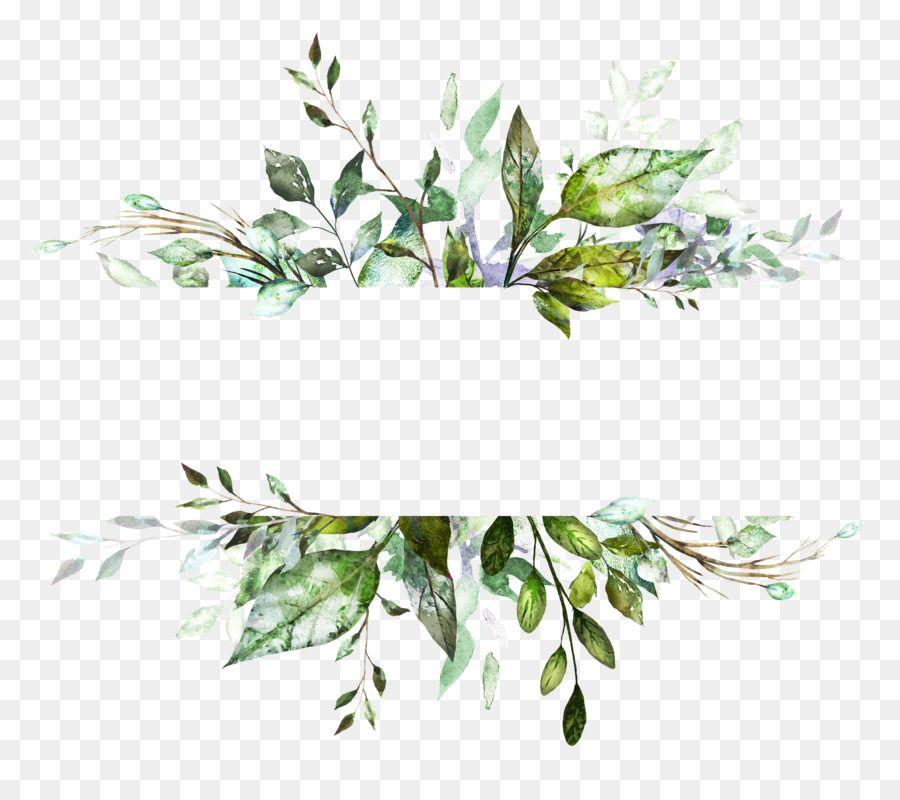 Watercolor Flowers Watercolor Painting Vector Graphics Illustration Drawing Painting Unlimited Downloa Hojas De Acuarela Dibujos Botanicos Fondos Acuarela