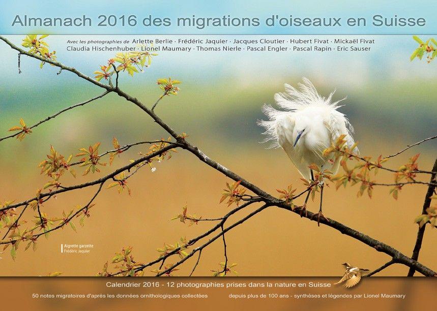 Almanach Calendrier 2016 Des Migrations D Oiseaux En Suisse K Line Sarl