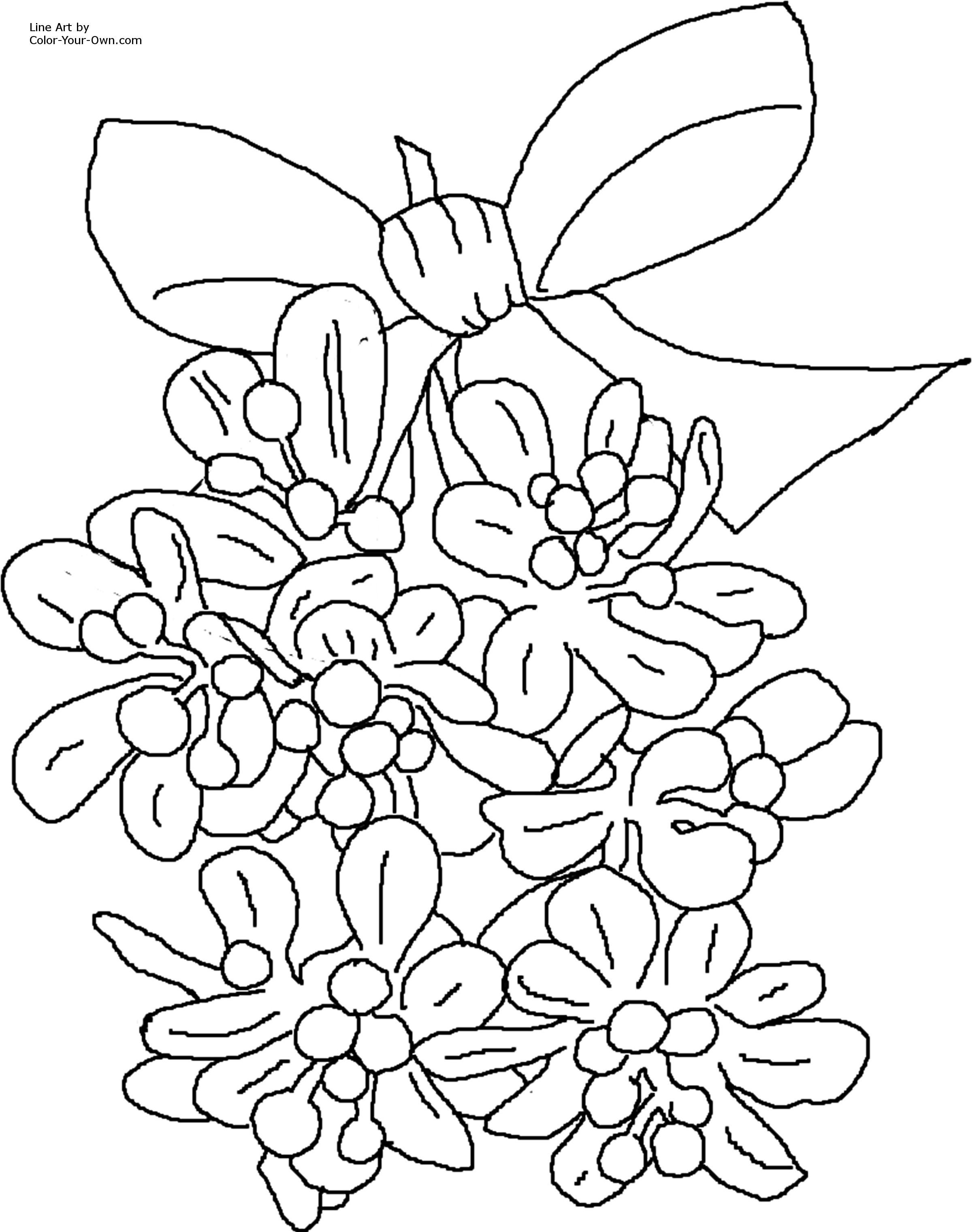 christmas coloring pages christmas mistletoe coloring page - Mistletoe Coloring Pages