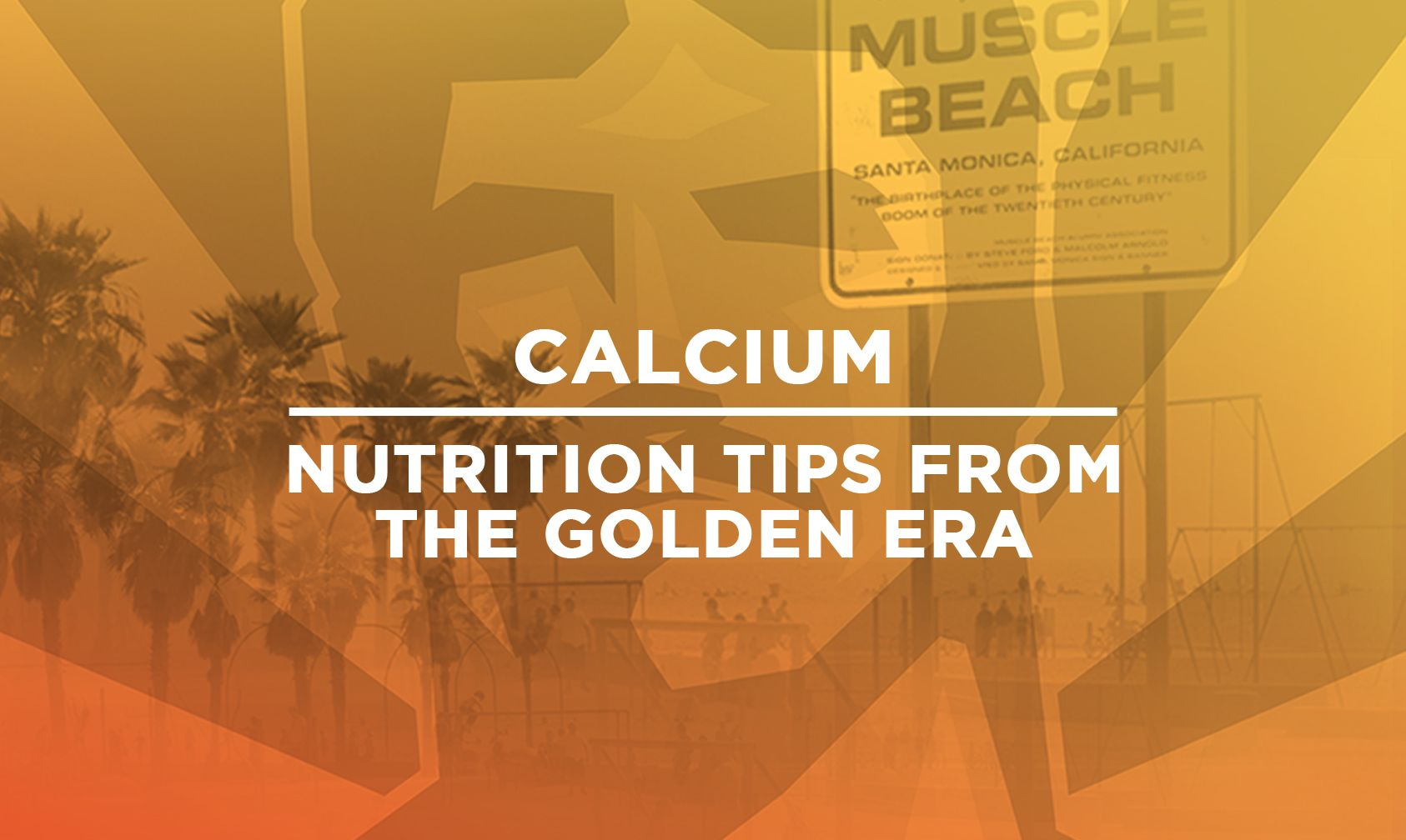 Supplements That Make Sense Old School Labs of