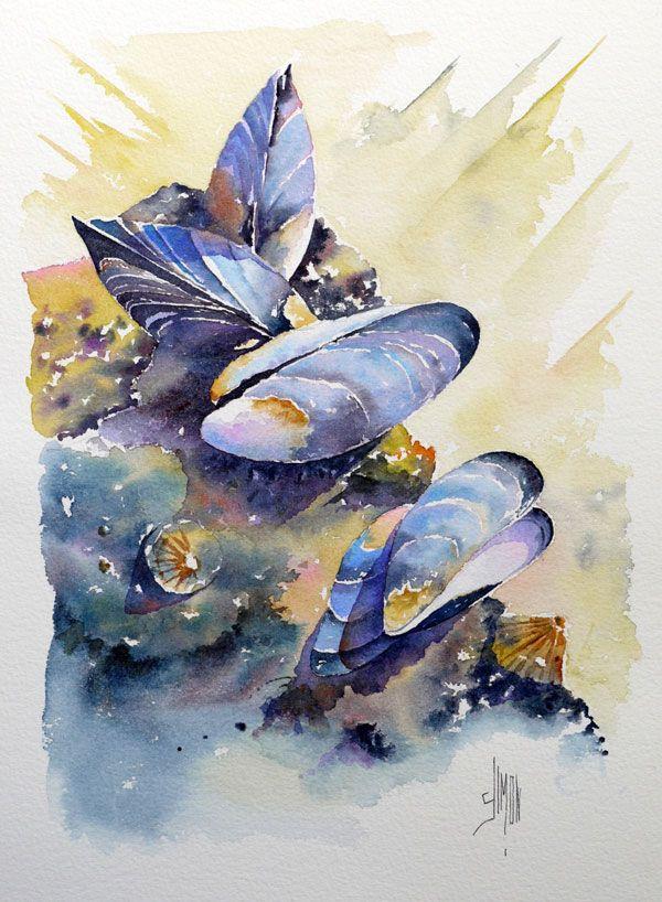 Les Moules Joel Simon Plus Oiseau En Aquarelle Poissons D