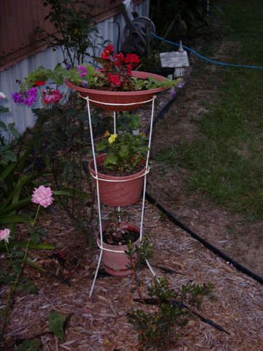 upside down tomato cage with pots, I put a big tray on top for a birdbath and planted morning glories to cover it