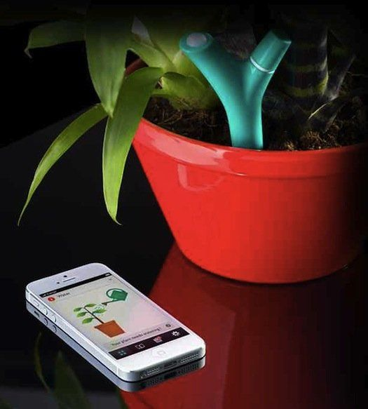 You 'pair' the Parrot Flower Power against a database of plants and then it automatically senses when your plant needs water, fertilizer, more sunlight, etc. and wirelessly communicates those needs to your smartphone! Never kill another plant again!