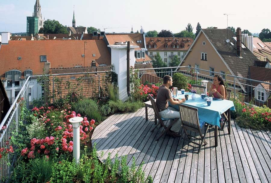 Dachgarten, grün, Weitblick, grün, modern, Holz, Dachterrasse ...