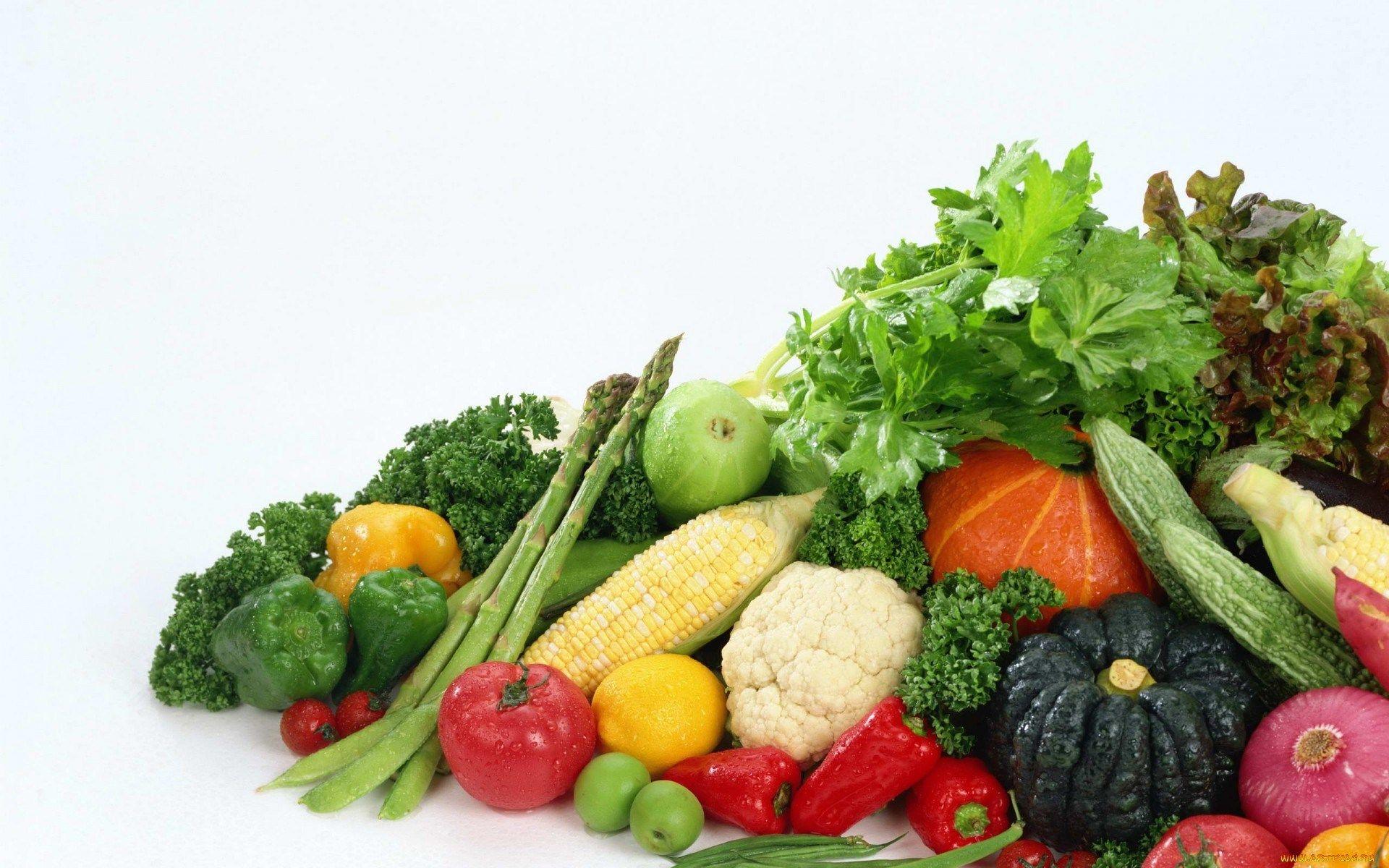 Panakos diet plan photo 1