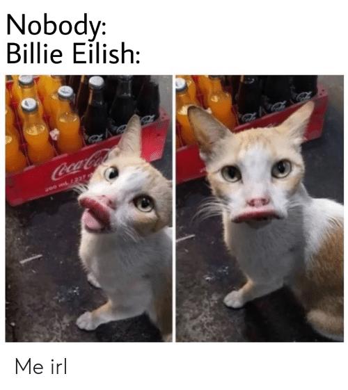 Nobody Billie Eilish Me Irl Irl Meme On Me Me In 2020 Memes Animals Save The Elephants