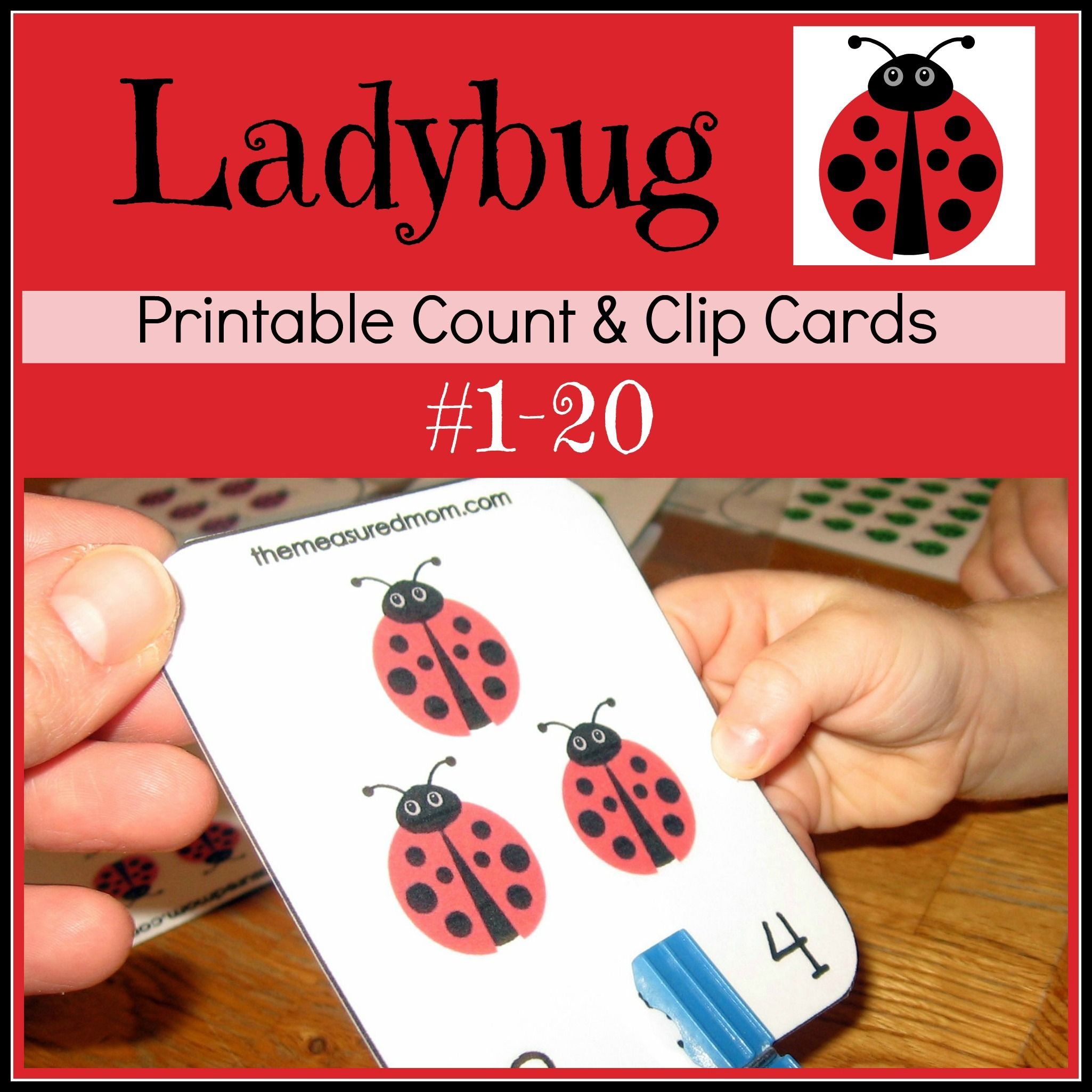 Printable Counting Activity For Preschoolers Ladybug