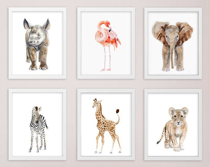 Baby Animal Framed Art Framed Nursery Prints Safari Etsy Safari Nursery Art Animal Nursery Art Baby Animal Nursery Art