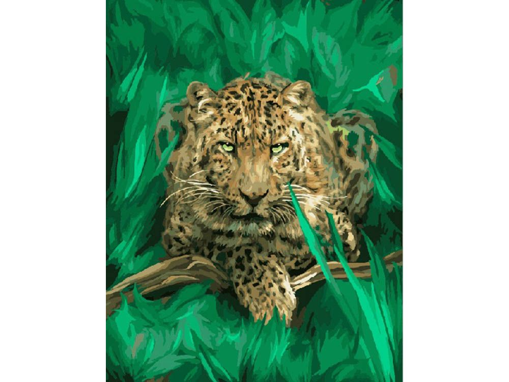 Картина по номерам «Леопард в джунглях» | Постеры в рамках ...