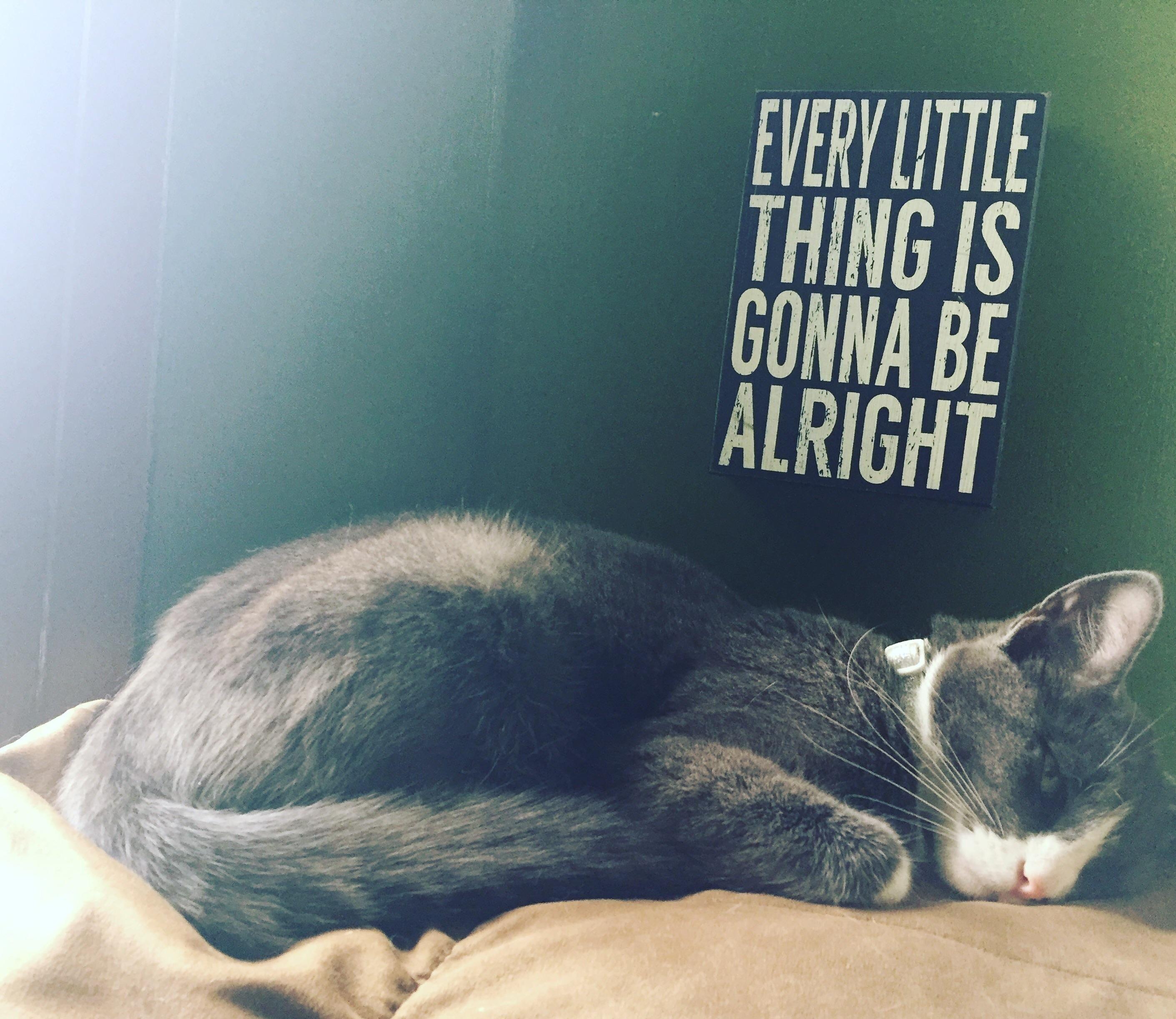 vaporwave cat meme