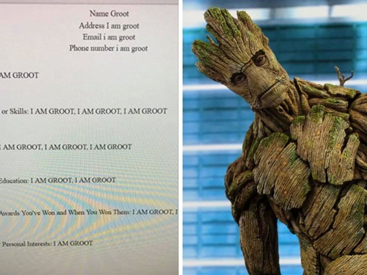 This Student Made A Resume For Groot And It S Honestly Hilarious How To Make Resume Groot Resume