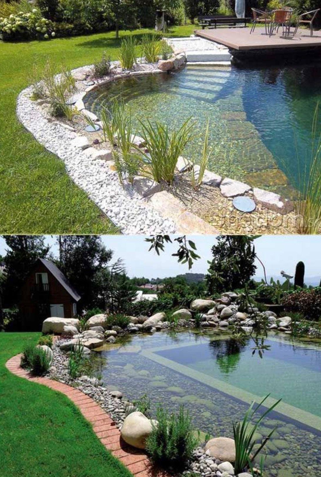 Pools Pooldesign Pools Wateringholes Swimming Backyard Pool Natural Pool Garden Pool