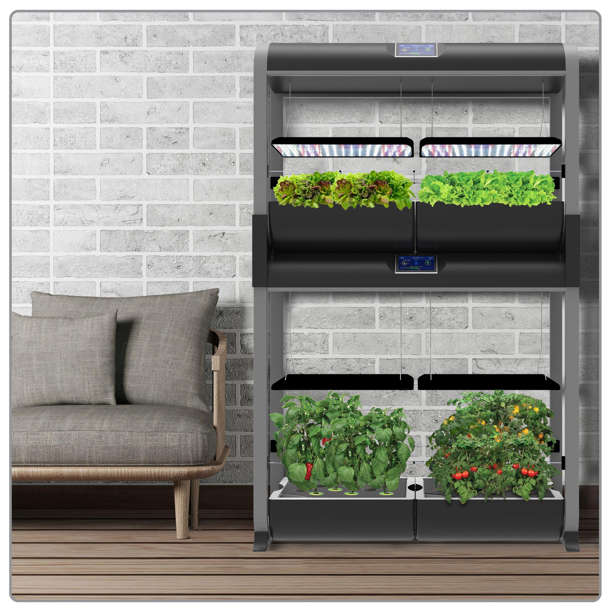 Pin On Growing Food 400 x 300