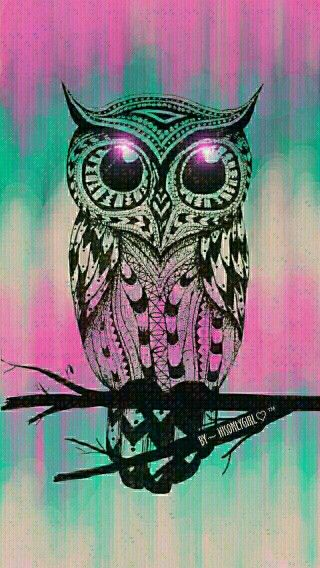 Owls Girly Owl Wallpaper Cute Owls Wallpaper Owl Background