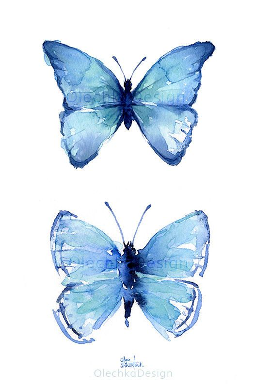 7f975b28c05 Image result for watercolor butterfly images for drawing
