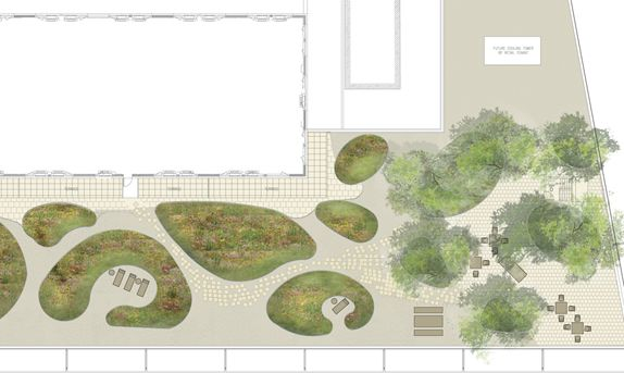 Project: Williamsburg High-Rise Green Roof - Starr Whitehouse Landscape Architects