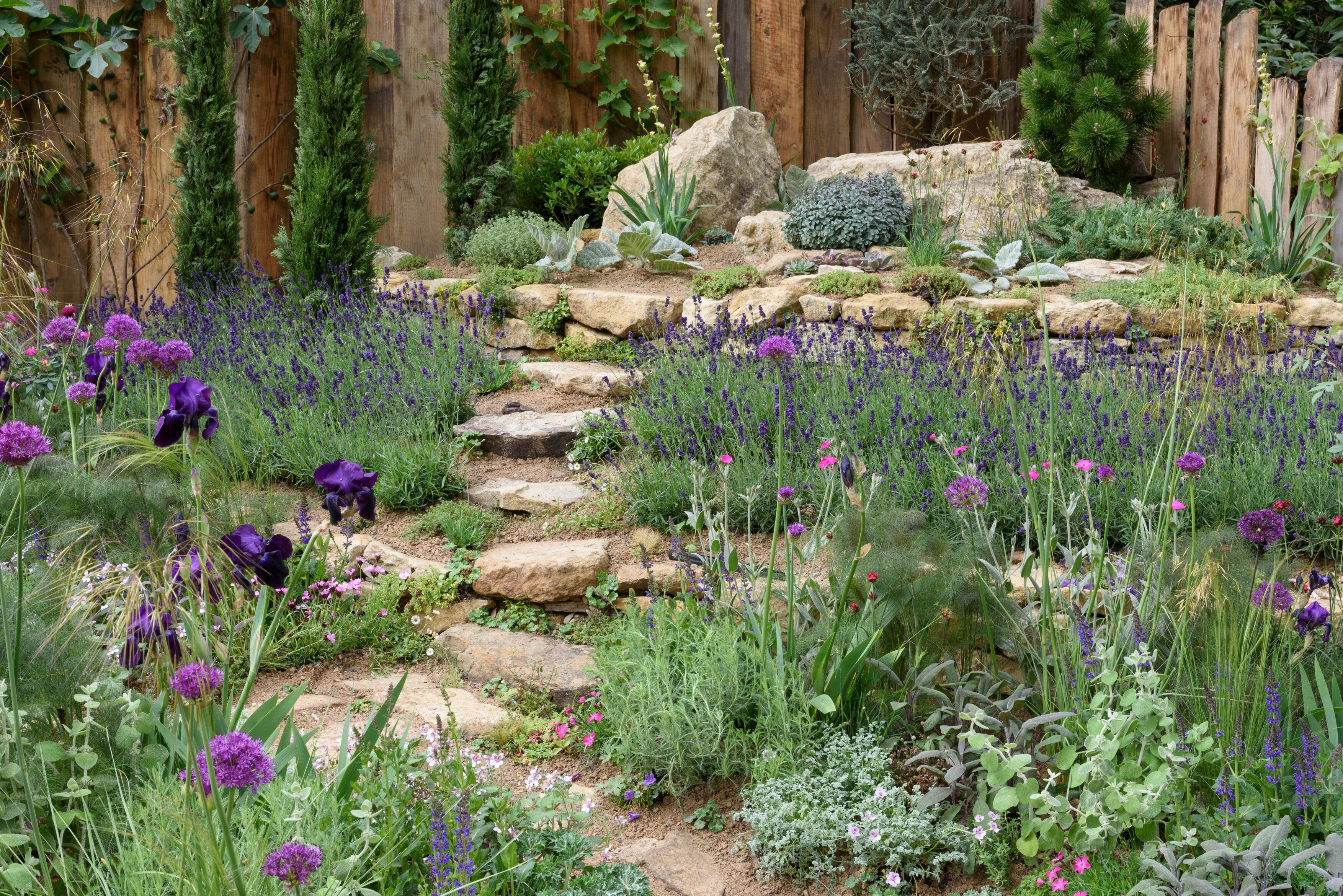 Pin By The Rhs On Rhs Chelsea Flower Show 2019 Chelsea Flower