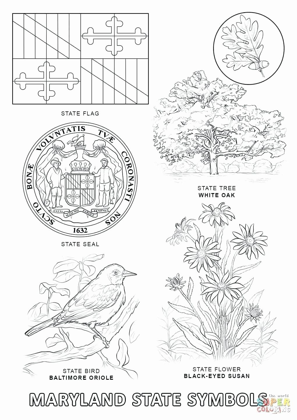 State Flag Coloring Pages Flag Coloring Pages Delaware State Flag State Flags