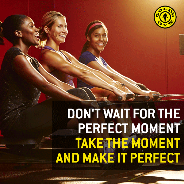 Gold S Gym Home Fitness Gym Golds Gym Gym Workouts Gyms Near Me