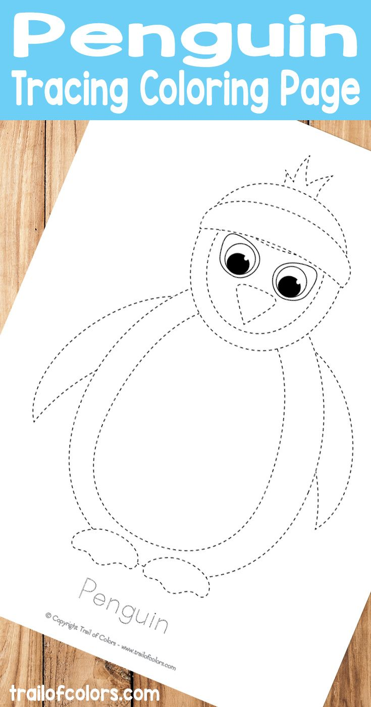 Penguin tracing coloring page pre writing practice writing