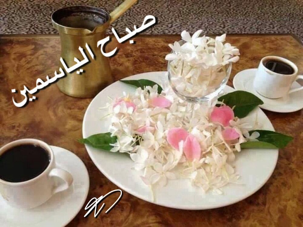 صباح الياسمين أبيض بلون قلوبكم وعطره بشذى انفاسكم صباح الأماني المحققات صباح الخير والبركات أحبتي وأصدقا Good Morning Coffee Favorite Drinks Coffee Love