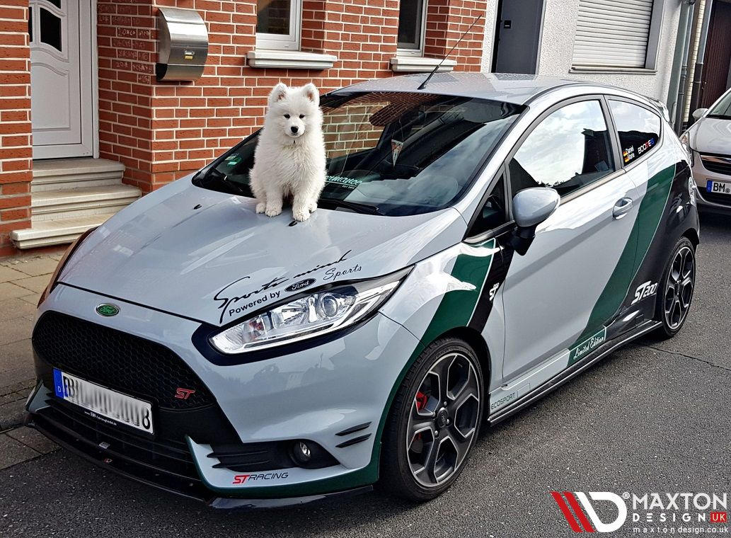 Had A Ruff Week Now You Can Relax And Enjoy The Week End Here S A Sight For Sore Eyes Dani Sahne St200 Ins Ford Fiesta Ford Fiesta St Ford Fiesta Modified