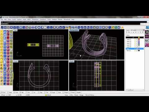 Why to use Rhino 3D and Firestorm Cad 3D Jewelry design program