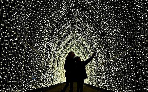 Dreamy Diy Canopy Bed Ideas Ohmeohmy Blog Best Christmas Lights Diy Canopy Canopy Bed Diy
