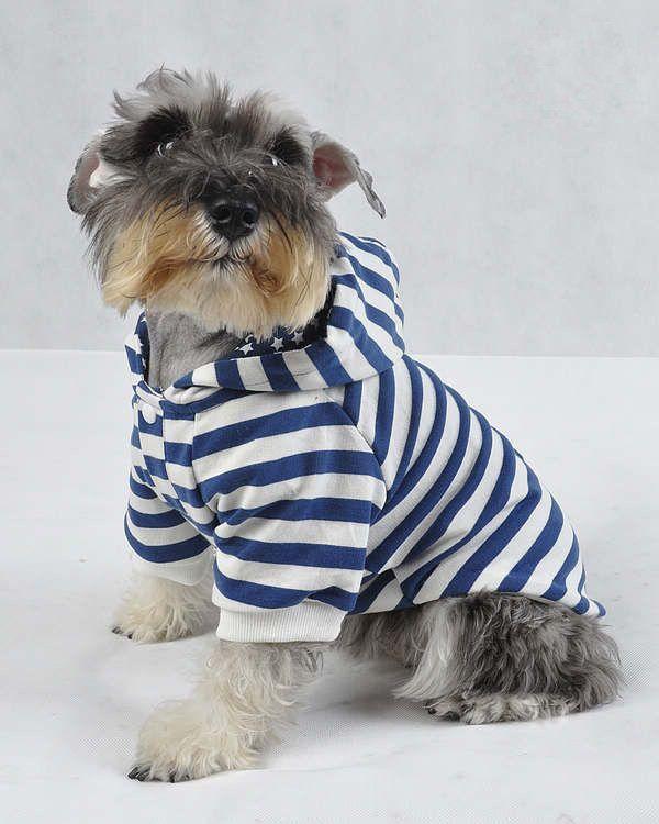 370412317_825.jpg (600×750) | mascota | Pinterest | Ropa para perros ...