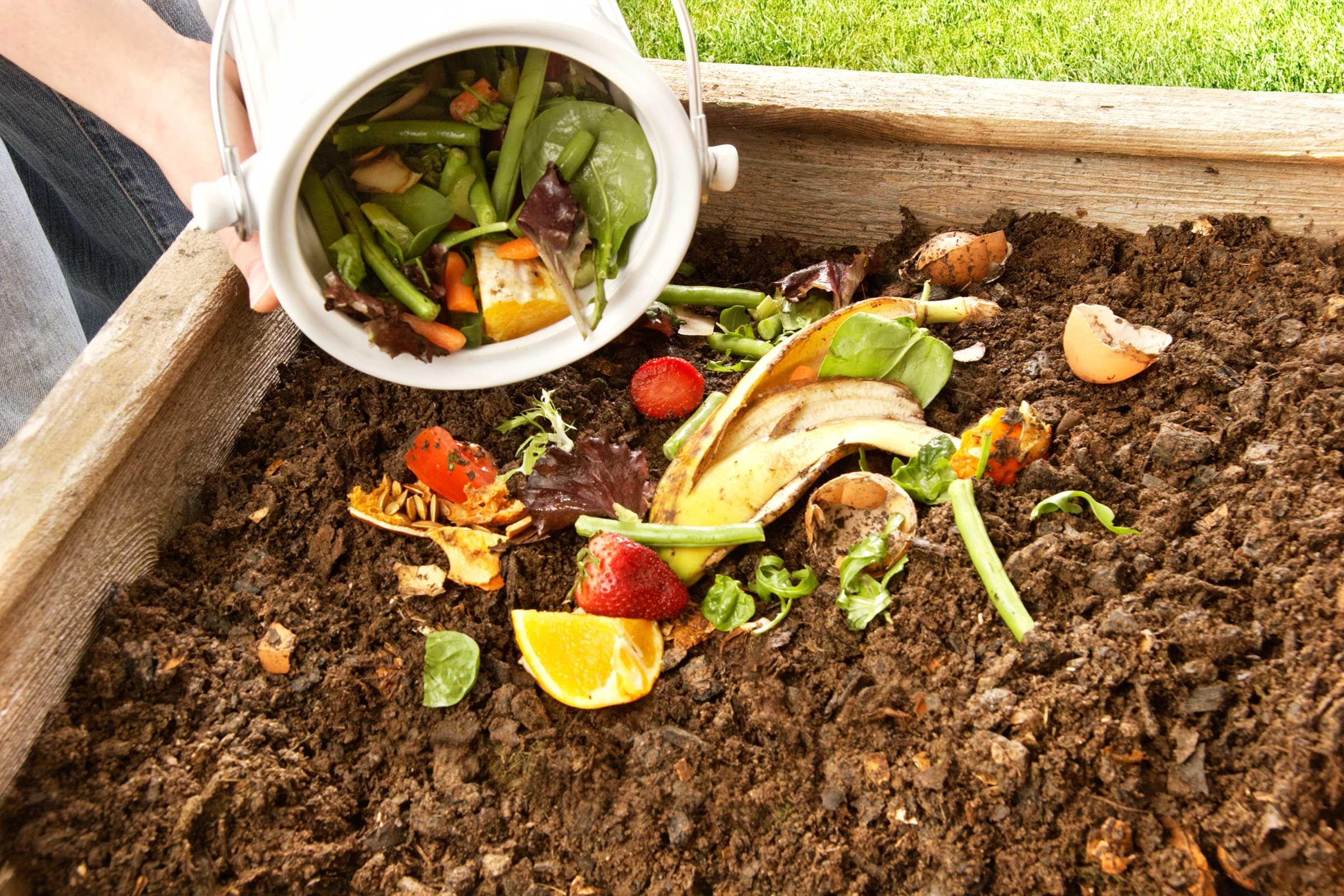 How to Compost: 10 Simple Steps to Get Started | Gardening ...