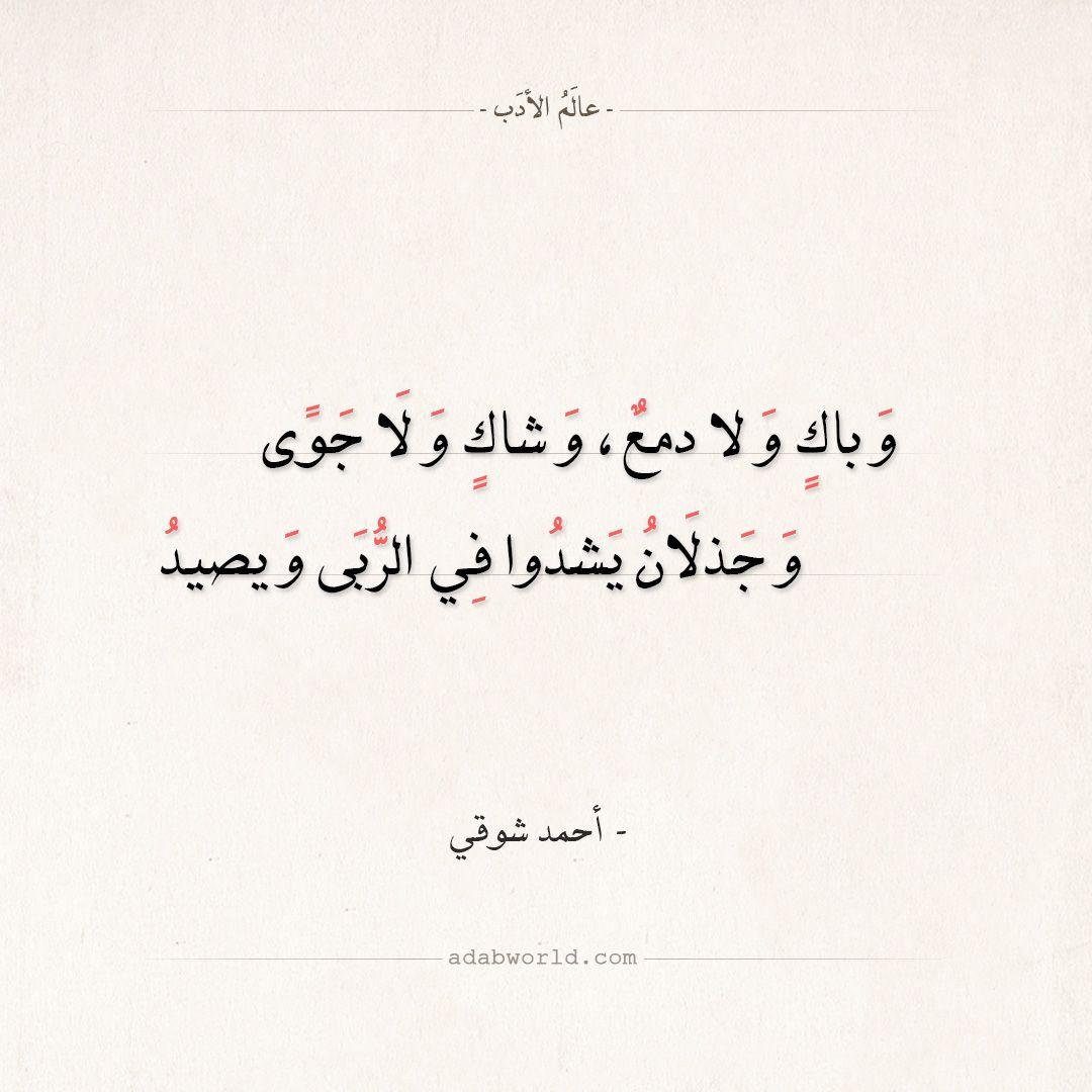 شعر أحمد شوقي وباك ولا دمع وشاك ولا جوى عالم الأدب Beautiful Arabic Words Arabic Words Arabic Calligraphy