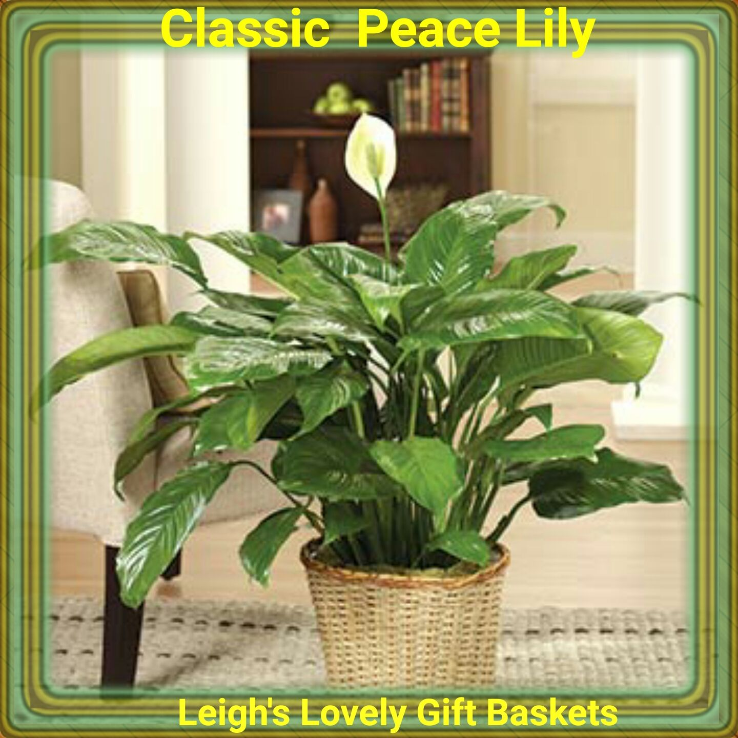 Classic Peace Lily 5999 Make A Beautiful Statement By Sending This